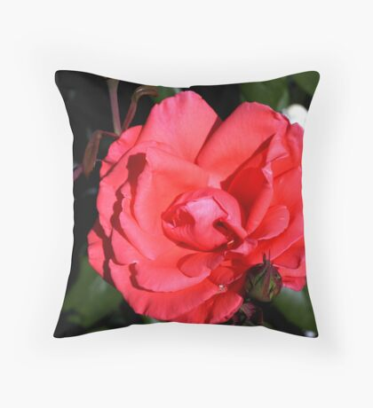 Roses are Red..... Throw Pillow
