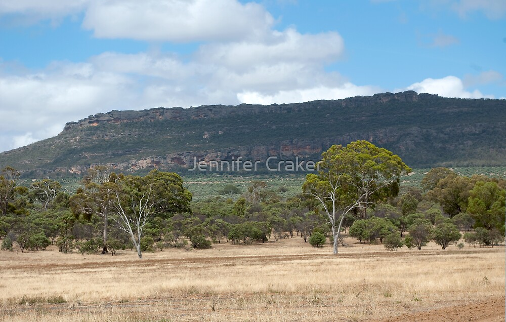 Mt Stapylton overlooking the Olive Grove by Jennifer Craker