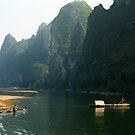 Fisherman with his cormorants - Li River   by Bev Pascoe