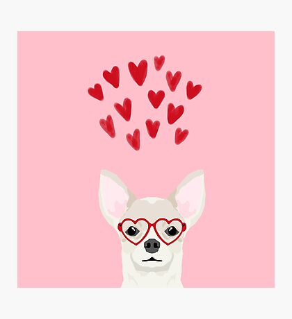 Chihuahua head dog gifts valentines day love hearts chihuahuas chiwawa Photographic Print