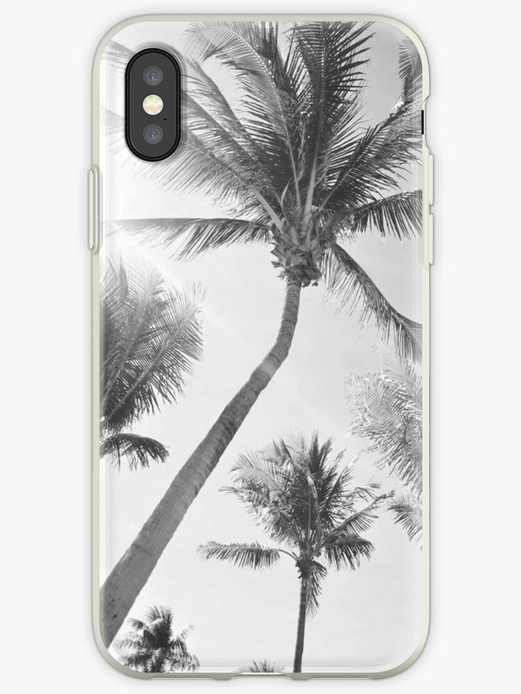 black palm by Tim3Sellers
