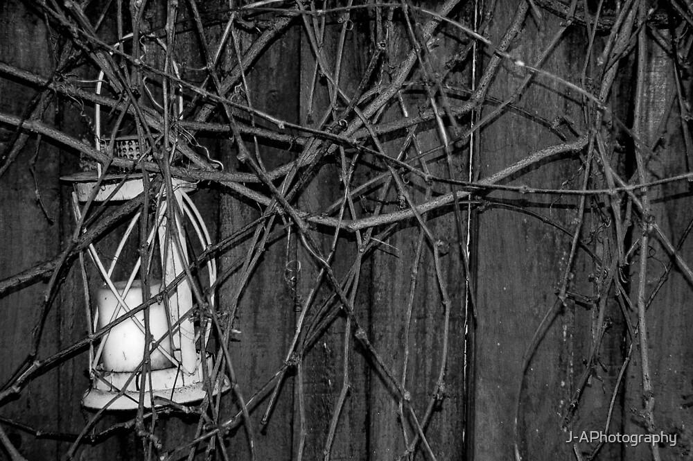 Lantern by J-APhotography