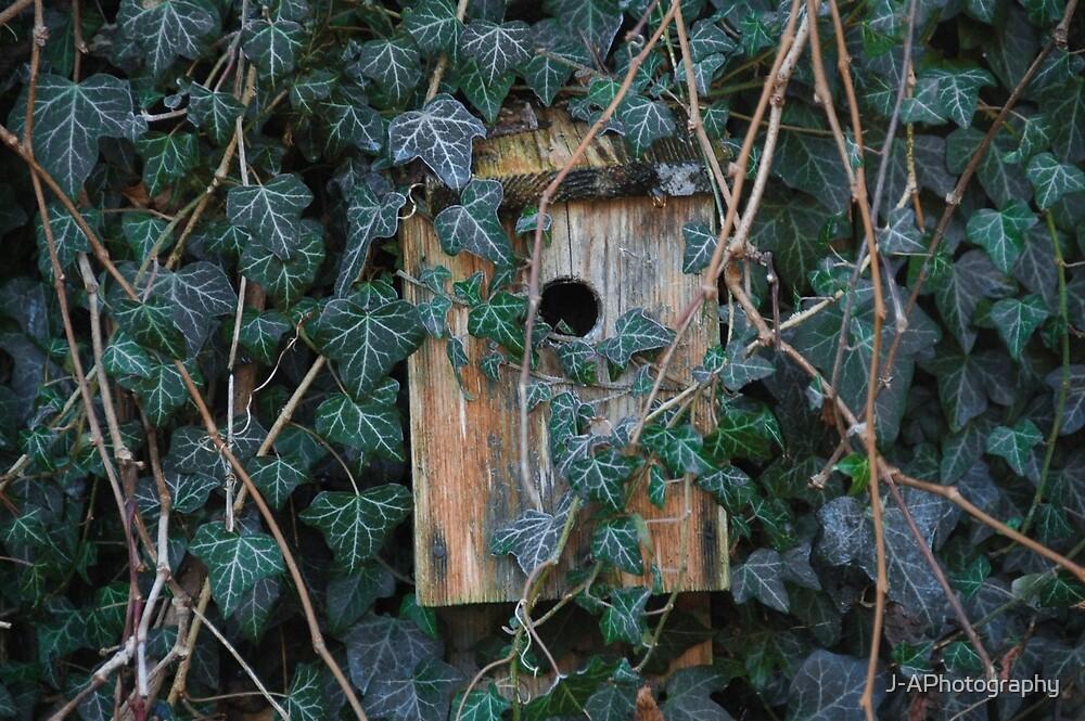 Birdbox by J-APhotography