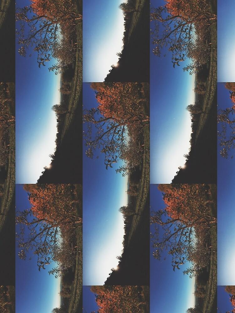 Nature by BlindEyeSociety