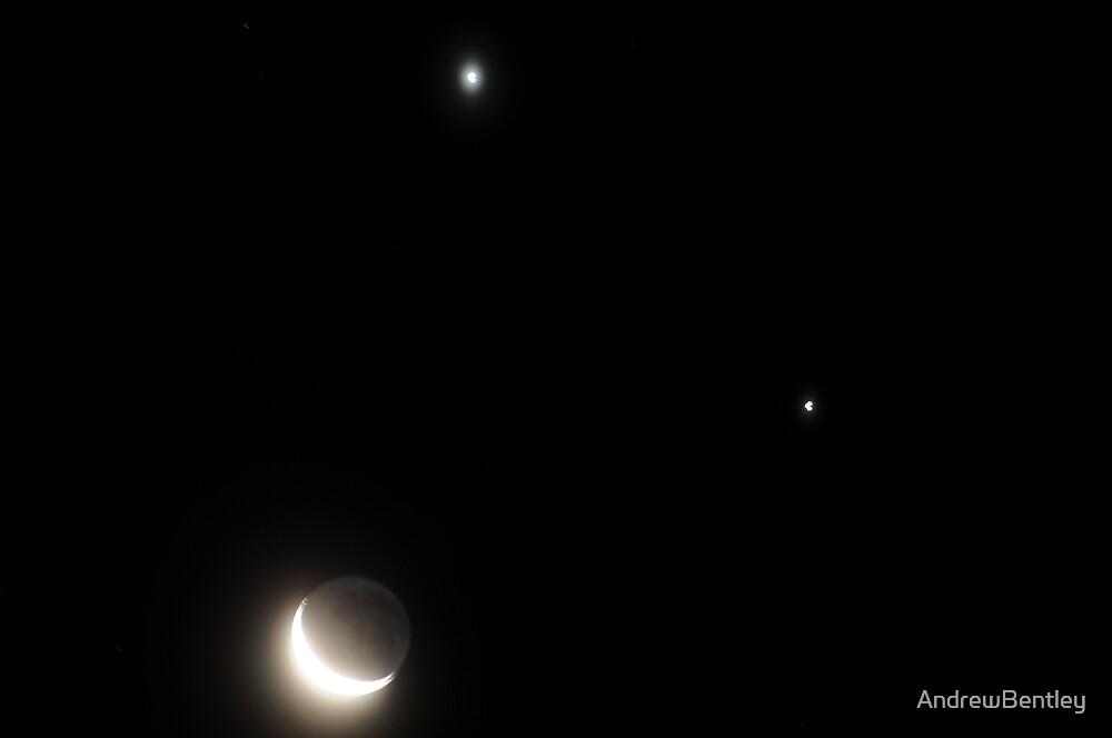 Jupiter & Venus 1-12-2008 by AndrewBentley