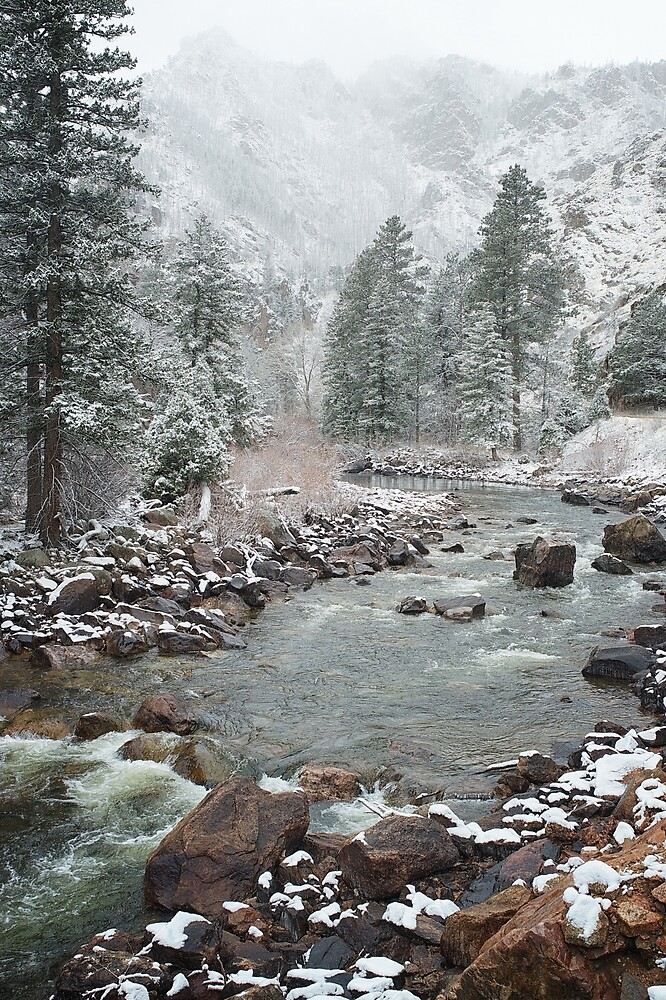Spring Snow Poudre Canyon N. Colorado by johnny gomez
