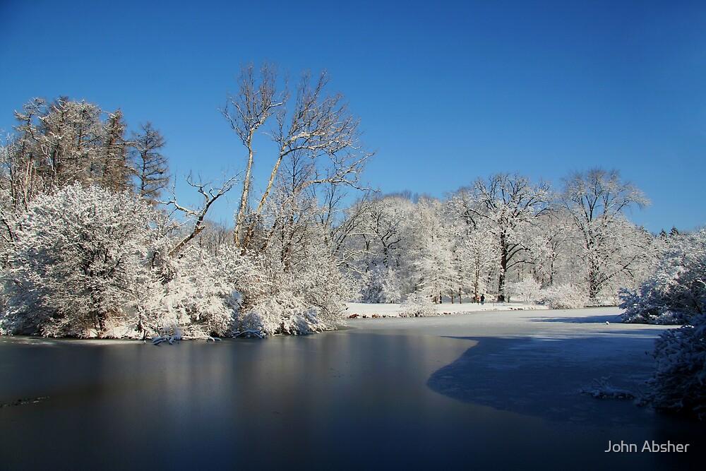 Winter Scene 2 by John Absher