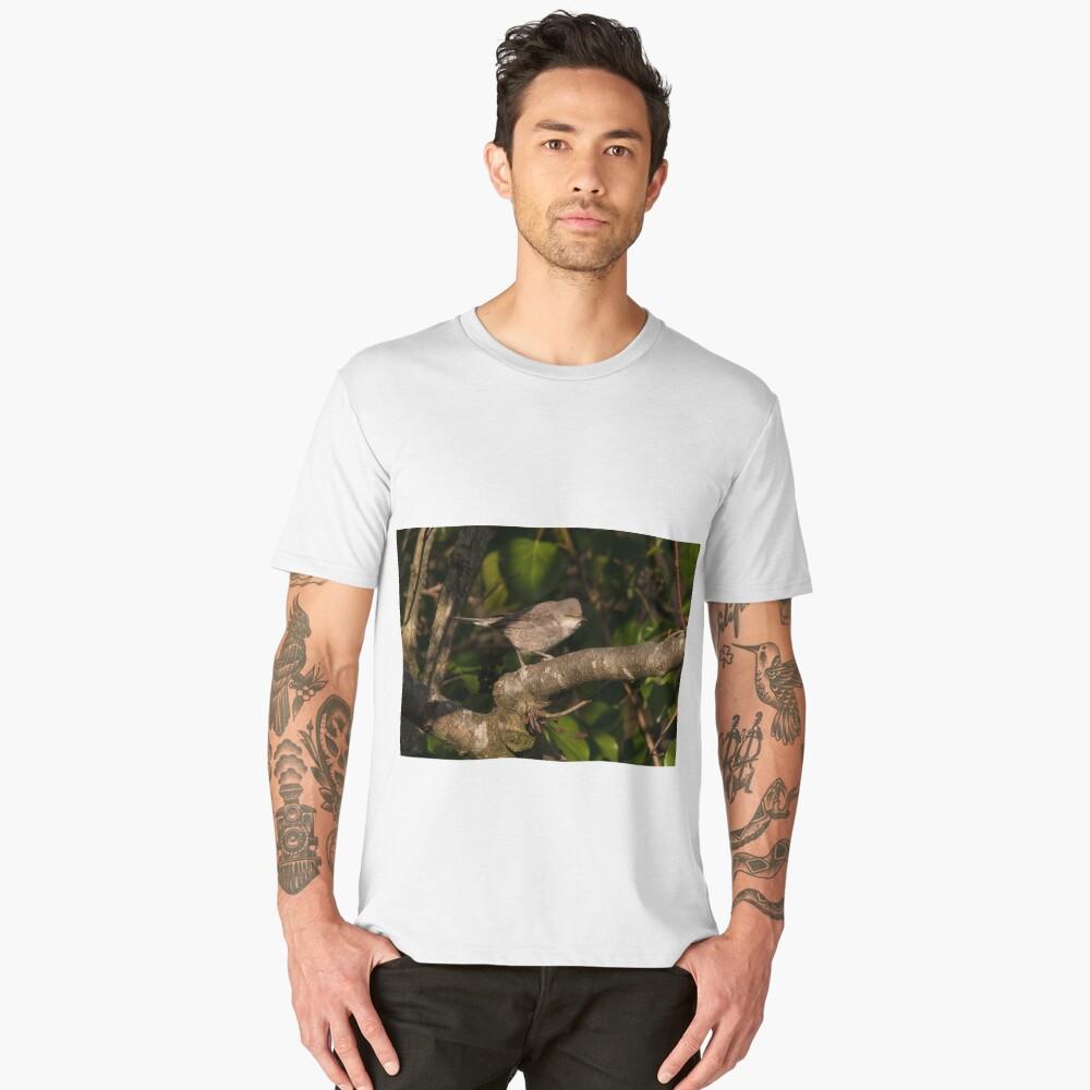 barred warbler (Sylvia nisoria) Men's Premium T-Shirt Front