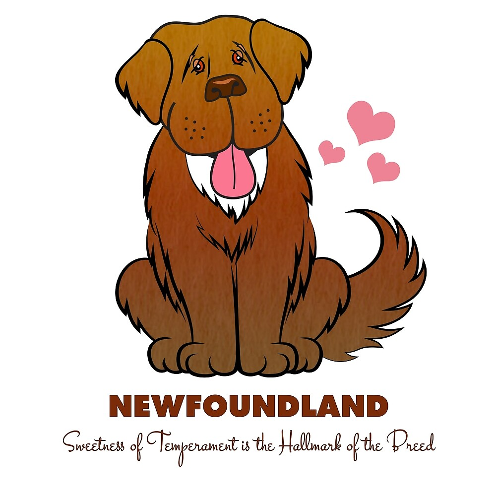 Sweet Newfoundland Dog by Christine Mullis