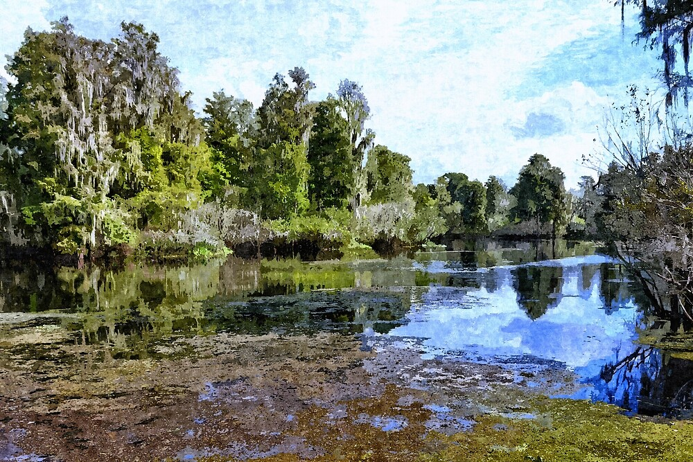 Florida River 7 - Artistic by jtrommer
