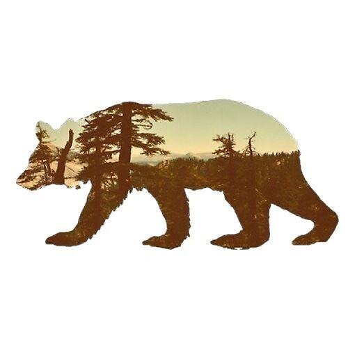 Cali Bear by NominC