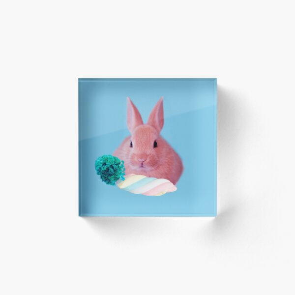 Pink Rabbit with carrot marshmellow by Alice Monber Acrylic Block