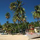 Beach in Tobago by ten2eight