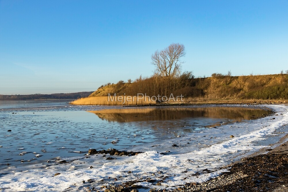 Sea shore and reeds on a winters Day by MejerPhotoArt