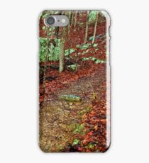 Kings Bluff Pedestal Rock, heart of the Ozarks. iPhone Case/Skin
