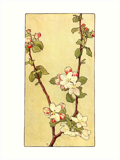 Apple Blossoms - Alice Willits Donaldson 1910  by Michael Kessel