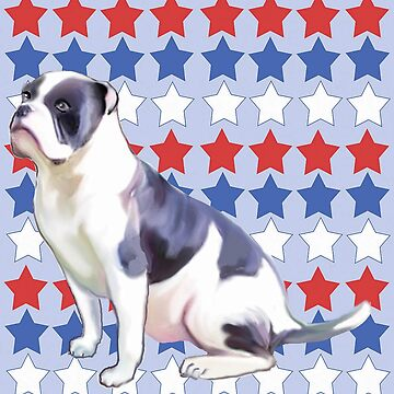 Red White and Blue Bulldog and Stars by IowaArtist