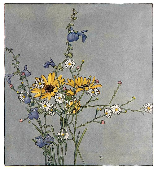 Texas Fall Flowers - Alice Willets Donaldson - 1913 by Michael Kessel