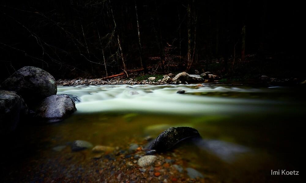 Höllbachtal 2.....Black Forest by Imi Koetz