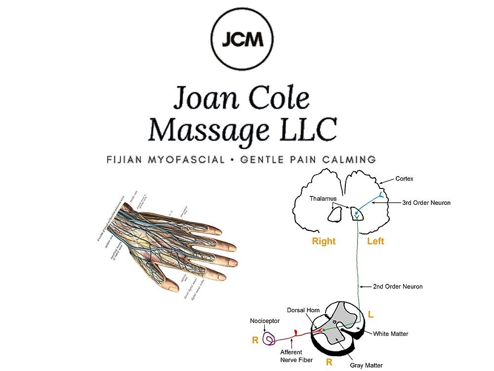 Joan Cole Massage - Gentle Pain Calming by lelandra