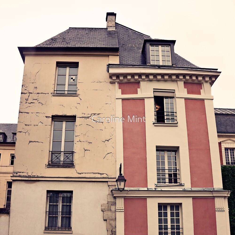 Paris in Pink Facade  by Caroline Mint