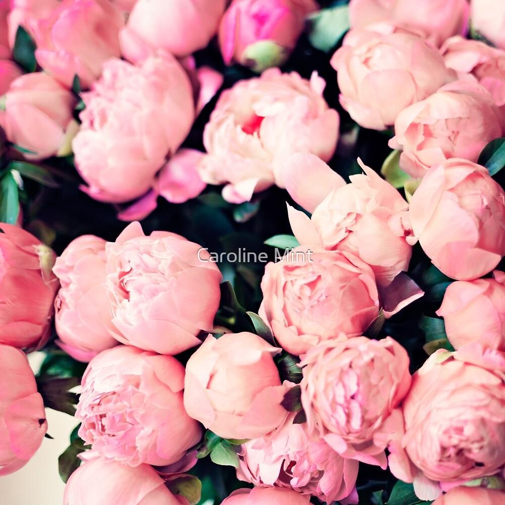 Paris Pink Peonies  by Caroline Mint