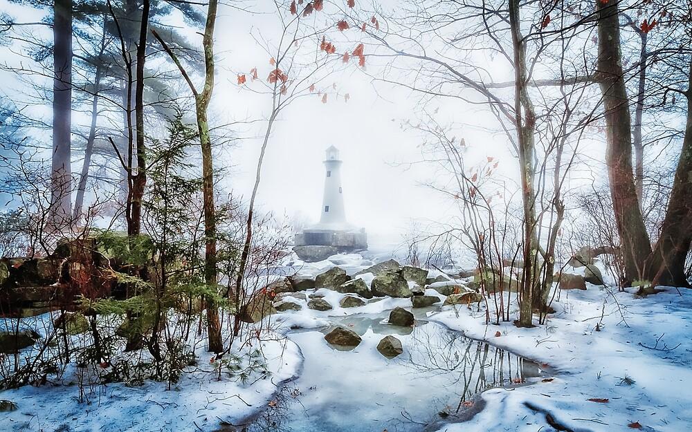 Brookline NH fog on the lake by Larry Richardson