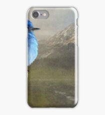 return to the high country mountain bluebird iPhone Case/Skin