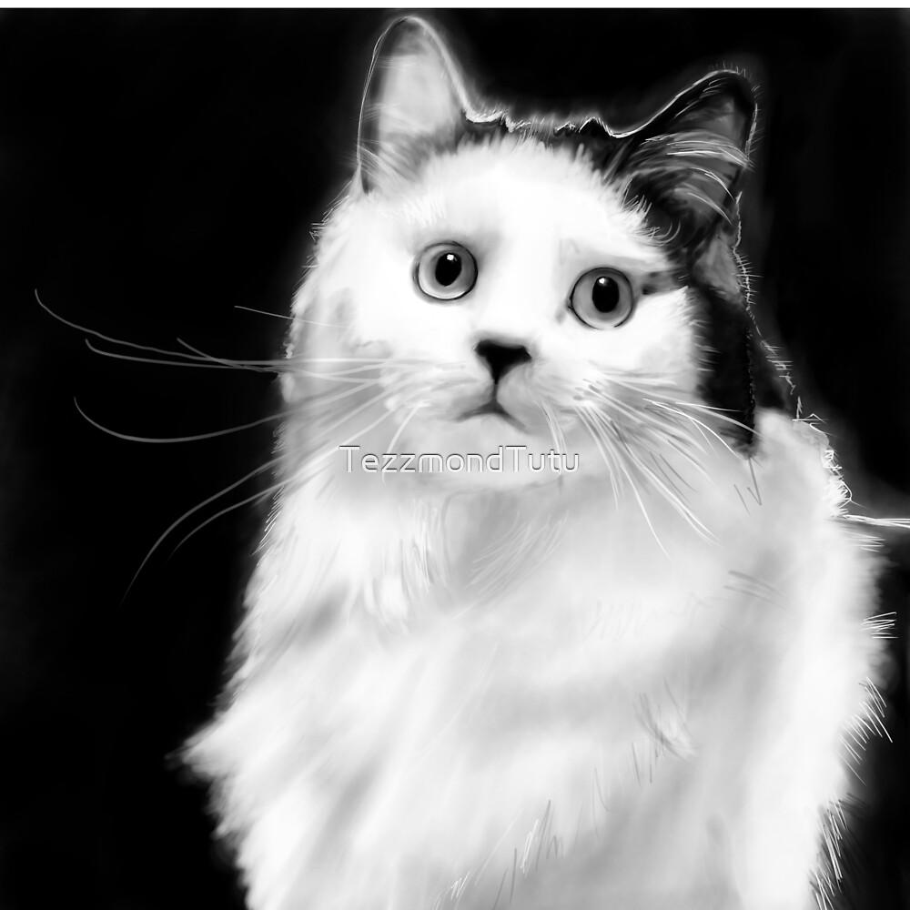 Sketch the Cat by TezzmondTutu