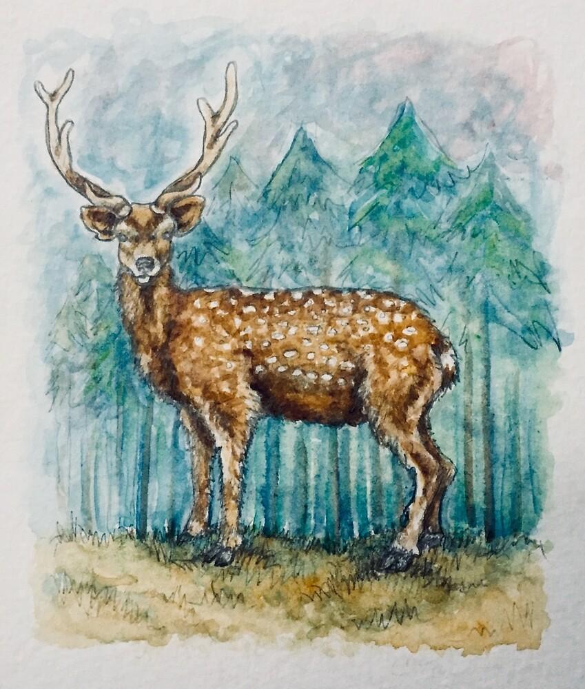Deer by Adaire252