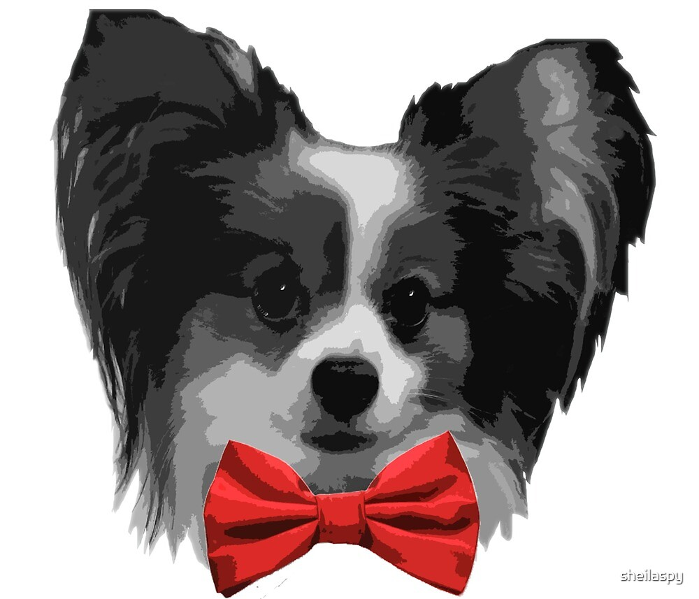 Dapper Papillon with Red Bowtie by sheilaspy