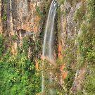 Purling Brook Falls in Springbrook by Michael Matthews