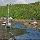 Low Tide at Solva by RedHillDigital