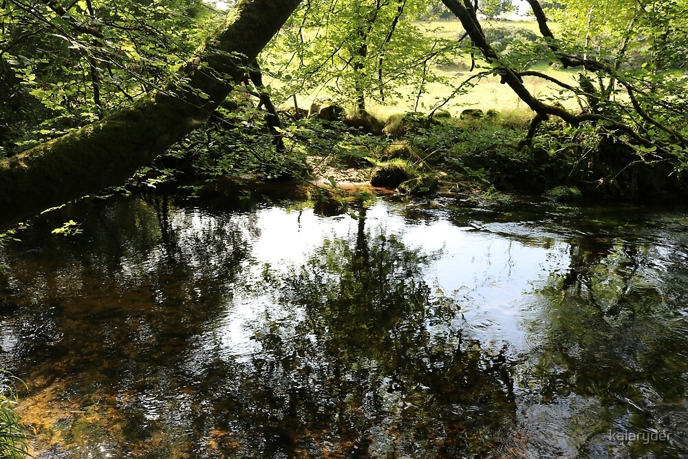 Reflections in River Fowey at Golitha by kalaryder