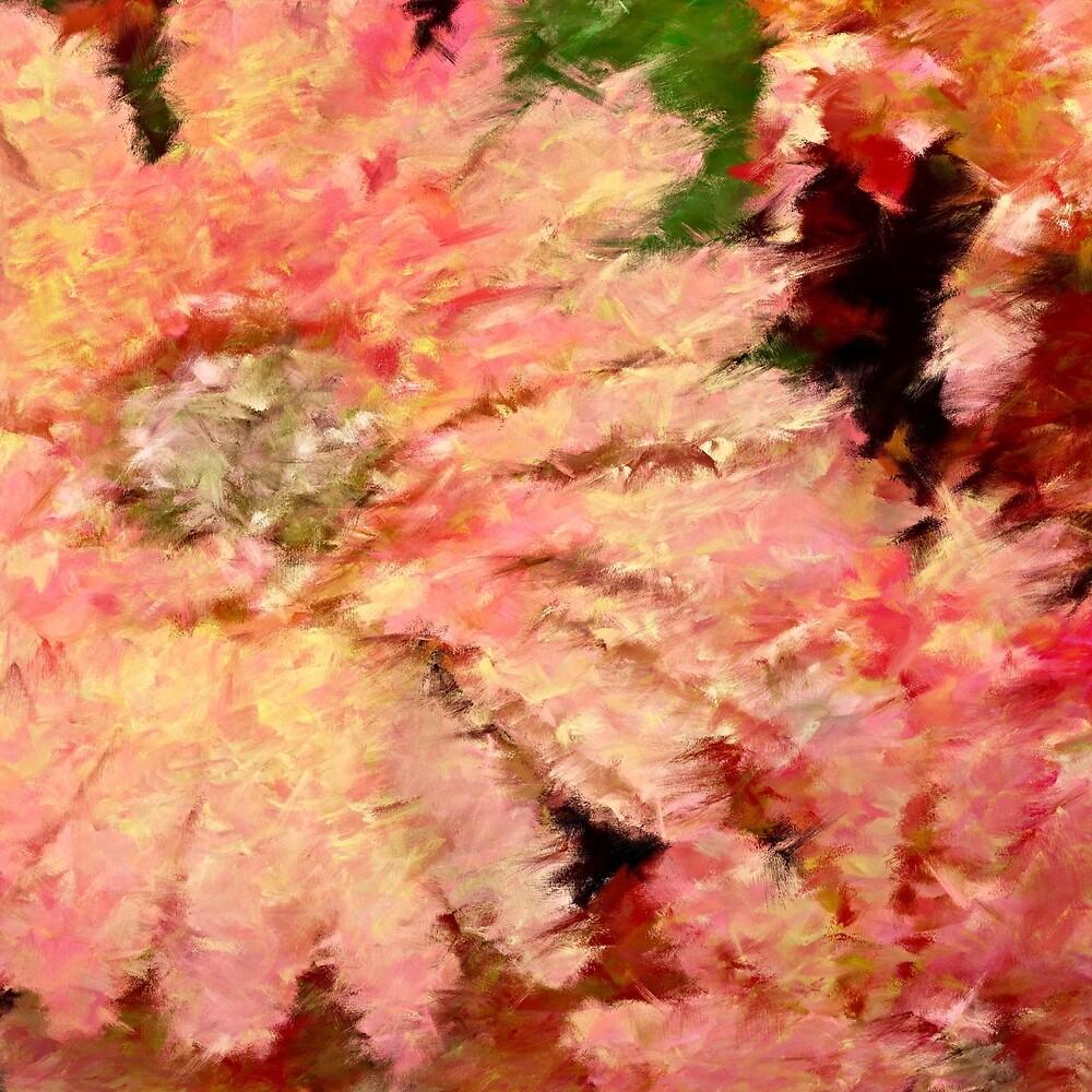 Gerbera Daisy Abstract by Dana Roper