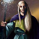Elven Wizard by niksebastian