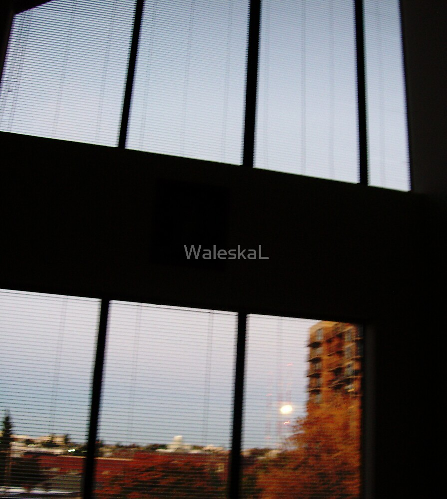A Window to the Moon by WaleskaL