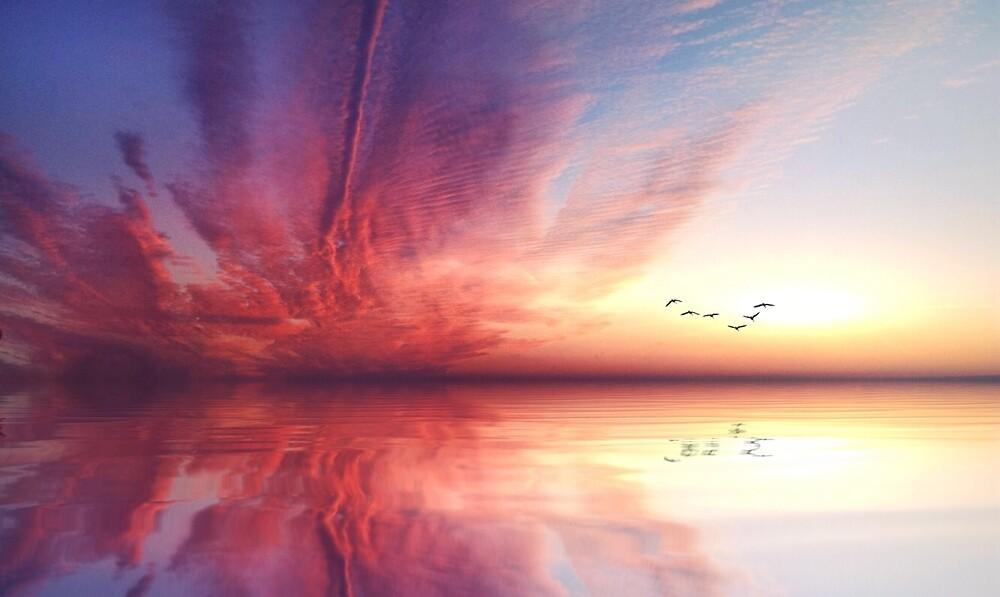 Sunset by DerekEntwistle