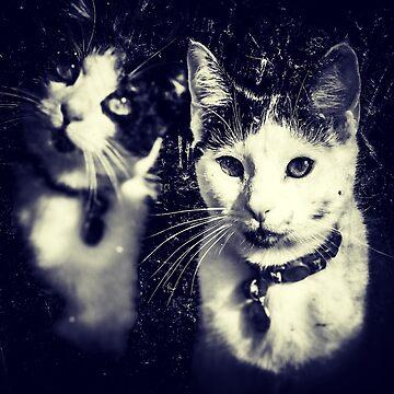 Steampunk Kitties by TarasTails