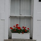 red geraniums in a white cottage by Nancy Huenergardt