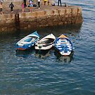 Colorful boats in Colimore Harbour by Nancy Huenergardt