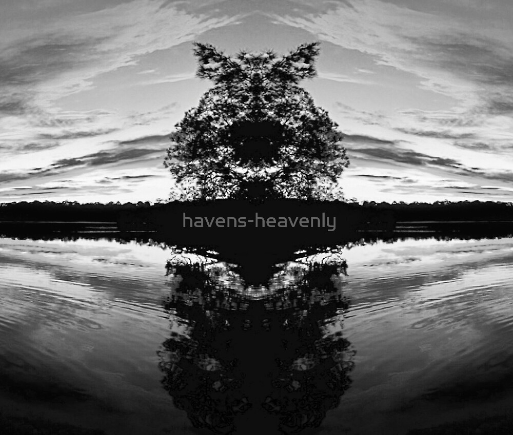 Custom Artwork Reflections Sunset One (B&W Version 2.0) by havens-heavenly