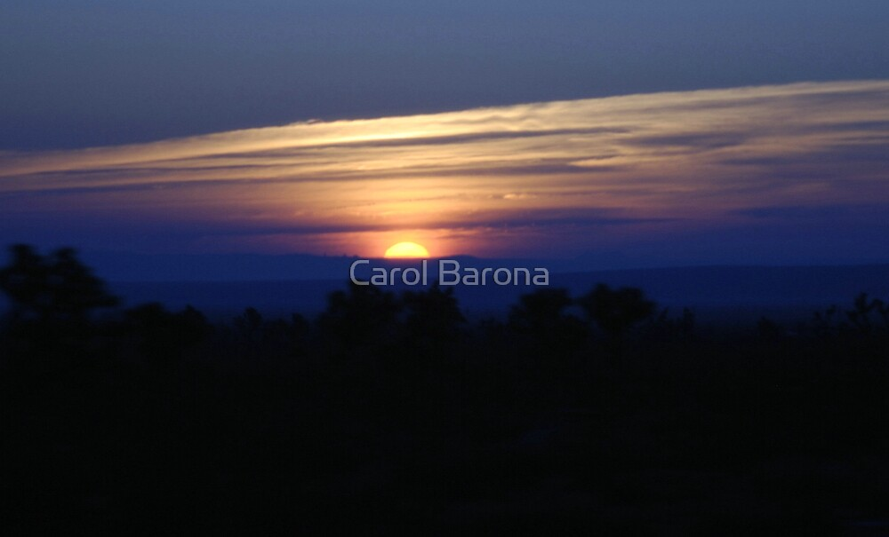 Color Me Sunrise by Carol Barona