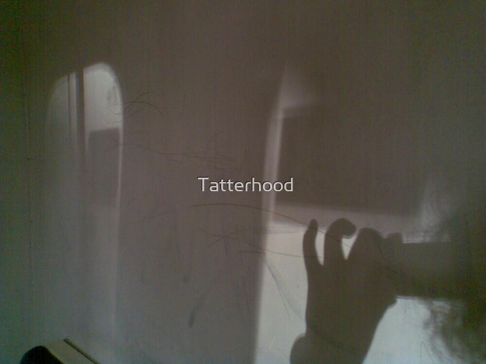 training through shadows NYE 08 by Tatterhood