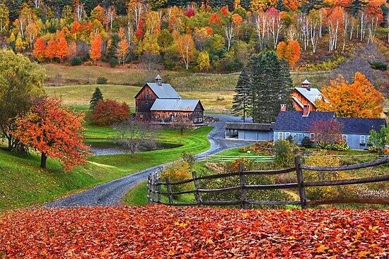 Sleepy Hollows Farm Woodstock Vermont VT Autumn by WayneOxfordPh