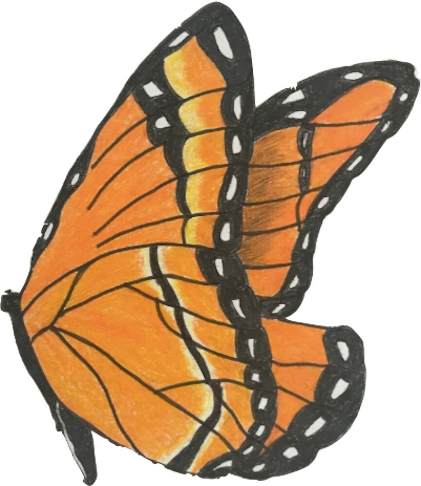 Monarch Butterfly by tinyartist17
