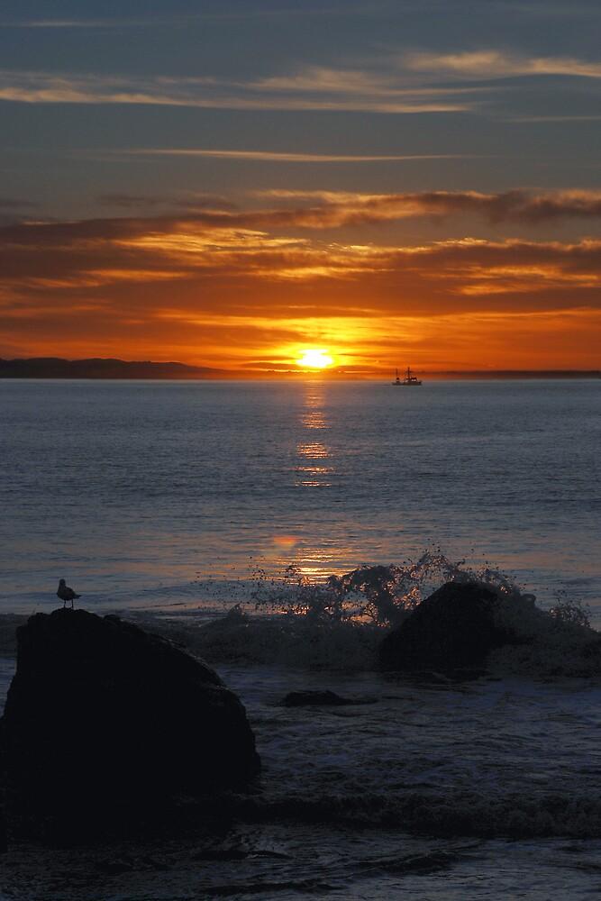 Sunset 03 by AlisonOneL