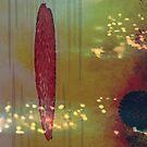 Red Brush by Rebecca Sheardown