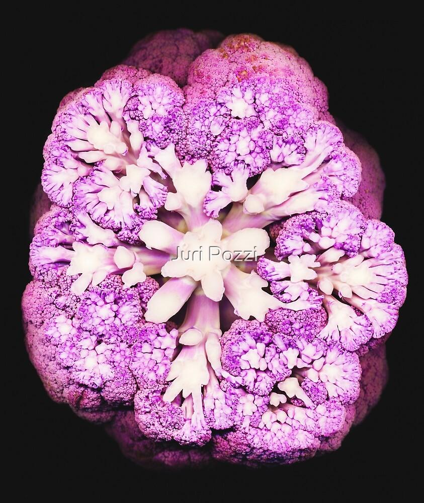 sliced purple cauliflower by Juri Pozzi