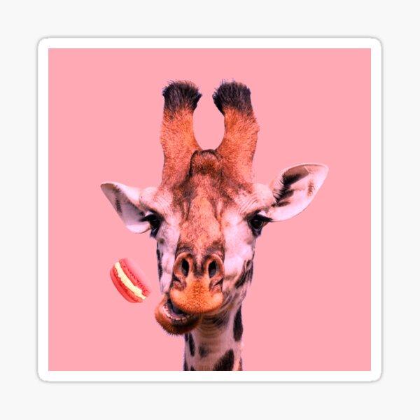 Lovely giraffe with macaron by Alice Monber Sticker